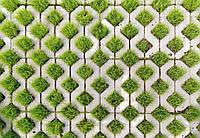 Фотообои 3 D кубы с камня и трава  размер 368 х 254 см