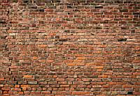 Кирпичная стена кладка фотообои 3 D  размер 368 х 254 см