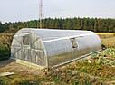 Теплица ЭКО - ТОП4  4х6 стандарт 4 мм (3.7), фото 2
