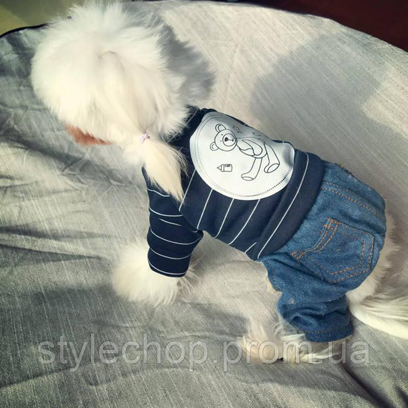 Комбінезон джинсовий для собак