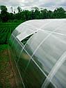 Теплица Эко Топ 5 х 8 м Премиум 10 мм, фото 3