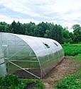 Теплица Эко Топ 5 х 8 м Премиум 10 мм, фото 4