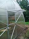 Теплица Эко Топ 5 х 8 м Премиум 10 мм, фото 5