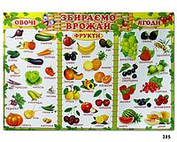 "Плакат обучающий ""Собираем урожай"" (""Збираємо врожай"")"