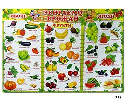 """Плакат навчальний """"Збираємо врожай"""" (""""Збираємо врожай"""")"""