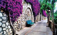 Купить фотообои цветы 3D на стену : Скамейка под цветами CN697