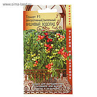 Семена помидоров томат Вишневый водопад ампельный