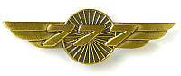 Значок Boeing 777 Wings Pin 580080020083 (Gold)
