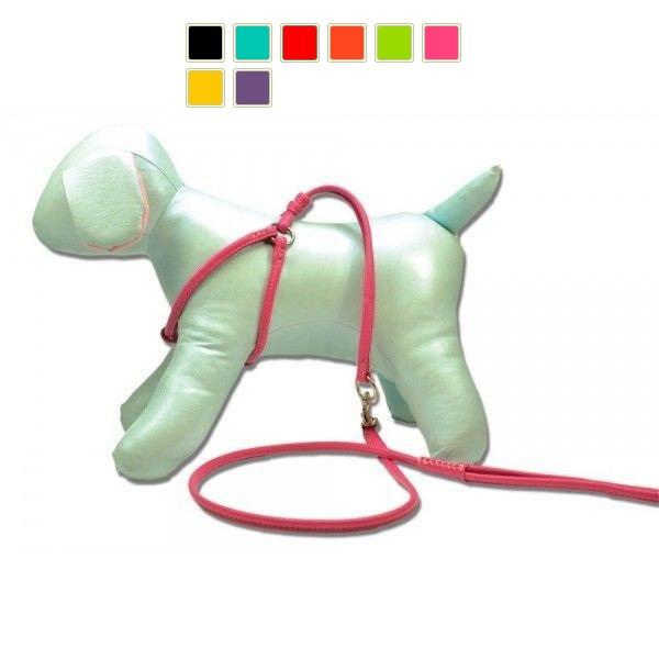 Collar GLAMOUR №2 - круглая кожаная шлея с поводком для собак