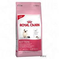 Royal Canin сухой корм для котят до 12 месяцев - 2 кг