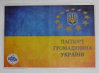 "Обложка на паспорт ""Паспорт гражданина"""