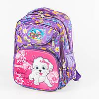 Оптом школьный рюкзак для девочек с ортопедической спинкой с собачкой - сиреневый - 31-Y020-1, фото 1