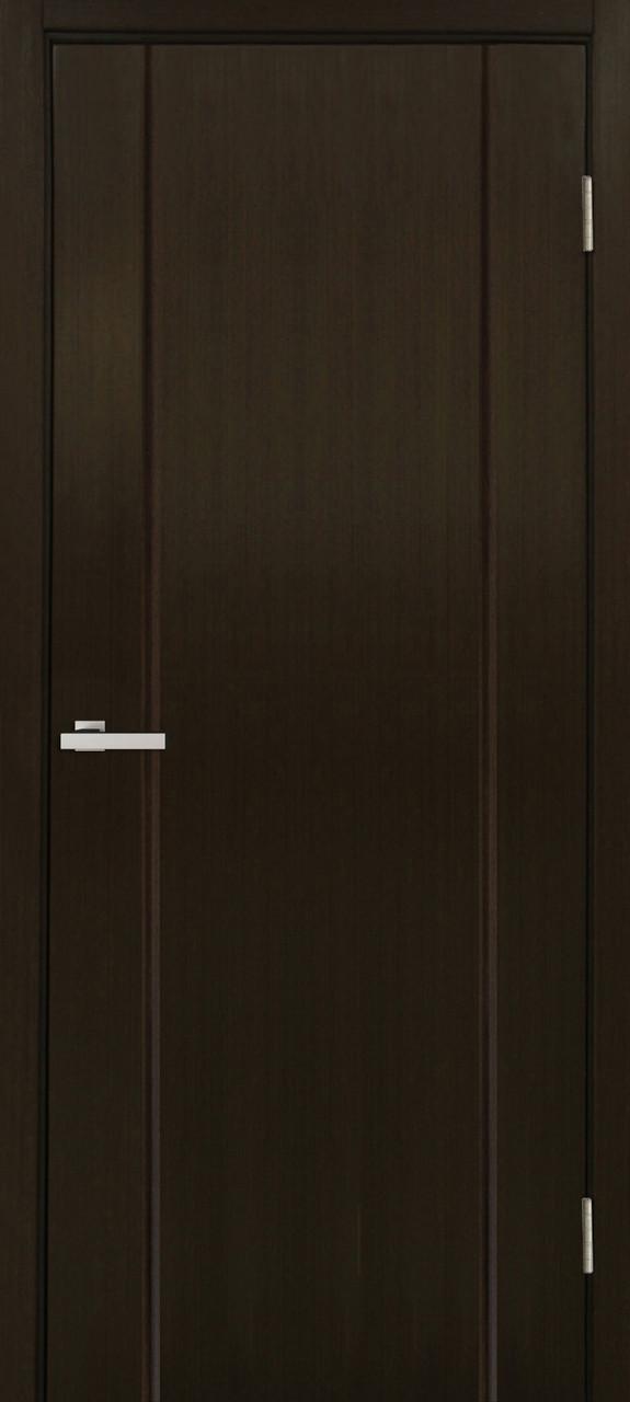 Дверное полотно Премьера ПГ Омис