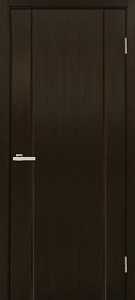 Дверное полотно Премьера ПГ Омис , фото 2