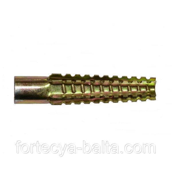 Анкер для газобетону TGS 10х60