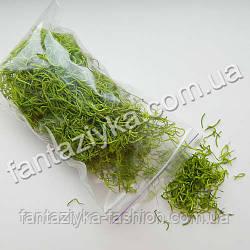 Испанский мох натуральный сушеный, салатовый 10г