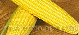 Семена кукурузы сахарной Оверленд F1 100000 семян Syngenta