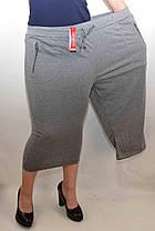 Бриджі жіночі трикотажні великі розміри L - 5XL, фото 2