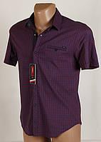 Рубашка мужская клетка Arma 4020 Размеры L/48