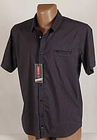 Рубаха мужская Arma 1401 Баталы Размеры 3XL