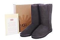 UGG Classic Tall Угги Шоколадные, фото 1