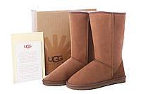 Угги UGG Classic Tall Коричневого цвета, фото 1
