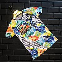Стильная мужская футболка Emporio Armani Армани с принтом (реплика)