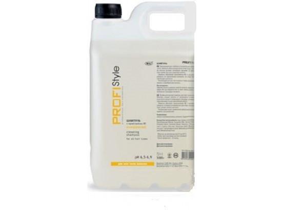 Profistyle Basic Шампунь Очищающий с провитамином В5 5000 мл