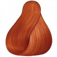 Wella Koleston Велла Колестон Perfect Стойкая крем-краска для волос 88/43 Интенс. светлый блондин красно-золотистый