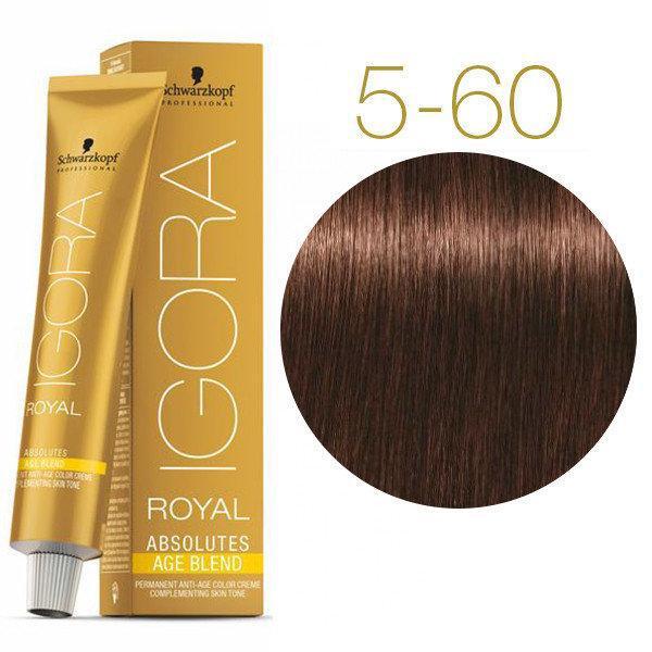 Schwarzkopf крем-краска для волос IGORA ROYAL Absolutes 100% Закрашивания седых волос 5-60 светло-коричневый шоколадный натуральный