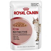 Royal Canin  влажный корм в соусе для кошек старше 1 года