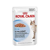 Royal Canin влажный корм для кошек,склонных к полноте