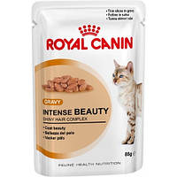 Royal Canin влажный корм для поддержания красоты шерсти кошек