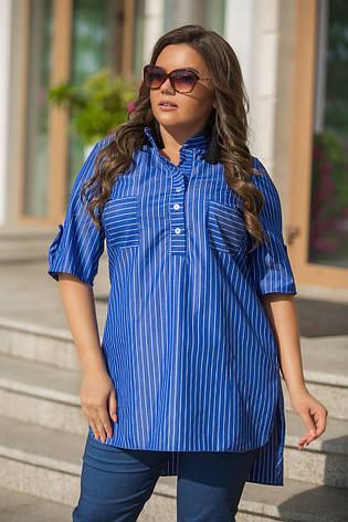 1684e3e35f6 Женская блузка в полоску   купить по лучшим ценам. блузки и туники ...