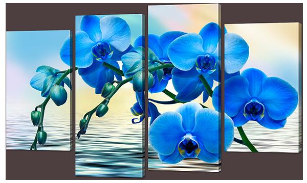 Модульная картина Орхидея синяя