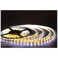 Светодиодная лента Horoz Electric HL 540L IP54 белая 6400К Ren (5м)