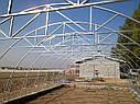 Теплица Эко Топ  6 х 18 м Премиум 6 мм, фото 4