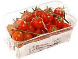 Бо флоупак для помідорів чері STC до 50 упак/хв, фото 2