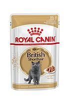 Паучи Royal Canin British Shorthair Adult для взрослых британских короткошерстных кошек, кусочки в соусе 85 г