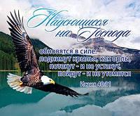 """Открытка карточка """"Надеющиеся на Господа обновятся в силе: поднимут крылья, как орлы..."""" Исаия 40:31"""