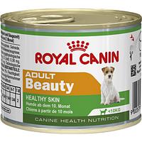 Royal Canin - для взрослых собак с 10 месяцев до 8 лет