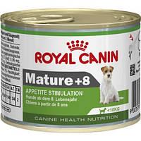 Royal Canin - для стареющих собак старше 8 лет