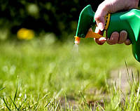 Гербициды для устранения сорняков: особенности применения