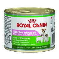Royal Canin - консерва для кормящих сук и  щенков до 2 месяцев