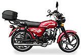Мотоцикл Musstang Alfa MT110-2 red красный, фото 4
