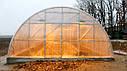 Теплица Эко Топ  6 х 40 м Премиум 6 мм, фото 8