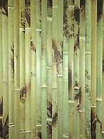 Бамбуковые обои  черепаховые зеленые, ширина 1,0м., фото 1