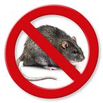 Родентициды — высокоэффективное средство от мышей и крыс!