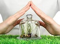 Фунгициды — мощное оружие против болезней растений!