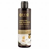 Шампунь для окрашенных волос Защита цвета Индийская амла Страны EcoLab, 200 мл